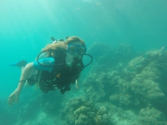 Try Dive (boat) with beach bungalow stay