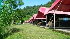 New Year Rafting+Camping at Jungle Camp (2N/3D)