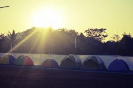 New Year's Special: Dahanu Farm Camping