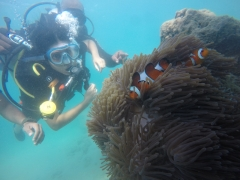 Try Dive in Havelock Island