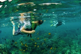 Snorkelling and Beach Cruise in Bali