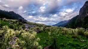 Kasol-Chalal-Tosh Trek