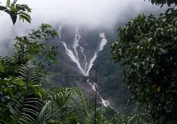 Trek to Dudhsagar Waterfalls (Ex-Pune)