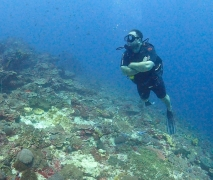Discover Scuba Diving in Bali (2 open water dives)