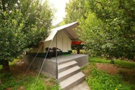 Sangla Valley Camping Trip