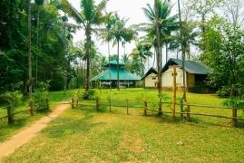 Camping near Kochi