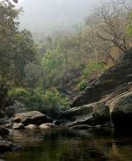 New Year Camping at Bhira Dam
