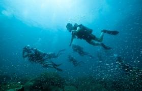 PADI Discover Scuba Diving (DSD)