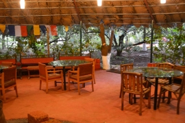Rafting in Kolad + Safari cottage stay (weekday)