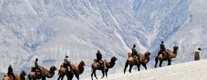 Manali-Leh-Manali Road Trip (11 days)