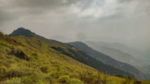 Trek to Paithalmala