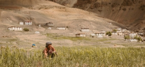 Spiti Valley Homestay Trek and Culltural Tour