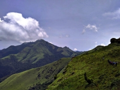 Tadiandamol Coorg Trek