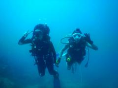 Discover Scuba Diving in Koh Tao
