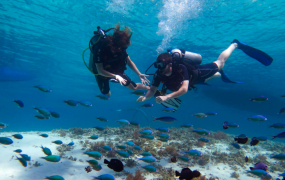 Discover Scuba Diving in Gili Air, Bali