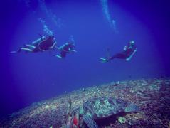 Discover Scuba Diving in Gili Meno, Bali
