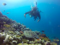 PADI Advanced Open Water Diver Course in Gili Meno, Bali