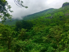 Monsoon Trek to Sondai Fort