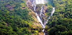 Dudhsagar Waterfall Trek (ex-Pune)