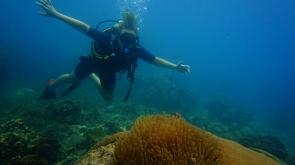 Discover Scuba Diving in Koh Samui, Thailand