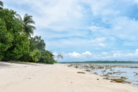Islands of Andamans with Port Blair and Neil Island (Premium Package)
