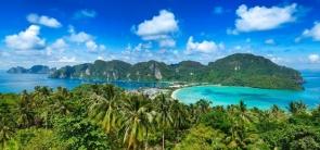 Snorkeling in Phi Phi Islands