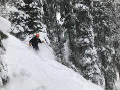 Beginner's Skiing Course in Gulmarg, Jammu Kashmir