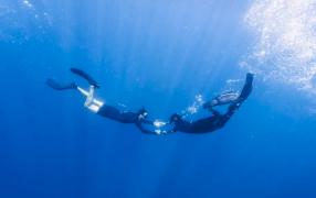 PADI Scuba Diver Course in Koh Phi Phi