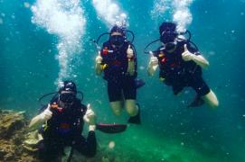 PADI Open Water Diver Course in Koh Phi Phi
