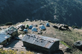 Triund Trek and Paragliding in Bir