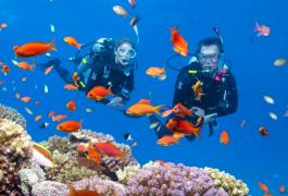 SSI Scuba Diver Course in Phuket