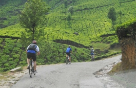 One day mountain biking at Munnar