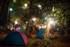 New Year's Special: Camping in Karjat (Alpine Tents)