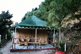 New Year Camping In Nainital with Twin-sharing Swiss Tents