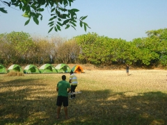Kashid Beach Camping for New Year 2020 - Lite Budget