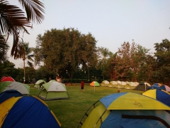 New Year Special: Camping in Dahanu