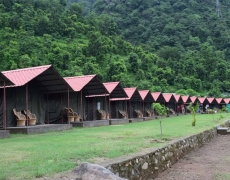 New Year Special: Camping and Rafting in Rishikesh (3-Day)