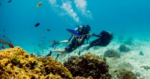 Try Diving in the Racha Islands (2 dives)
