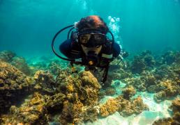 PADI Open Water Diver Course in Racha Yai
