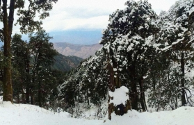 Snow Trek to Nag Tibba
