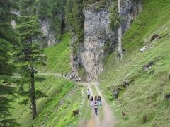Adventure trip in Chakrata