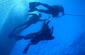 Try Dive in Goa (with stay)