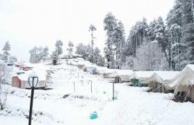 Hillside camping in Kanatal (2N/3D)