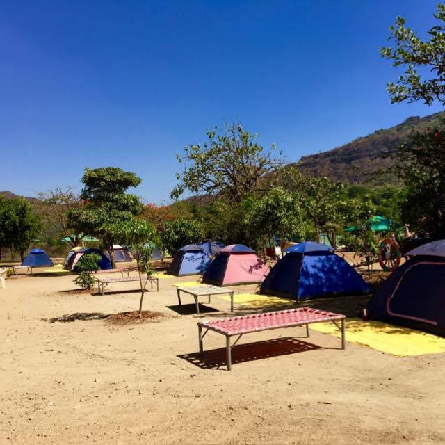 New Year Camping Tikona Fort Lakeview Maharashtra Adventure Tent Campsite Nature Pawna The Great Next