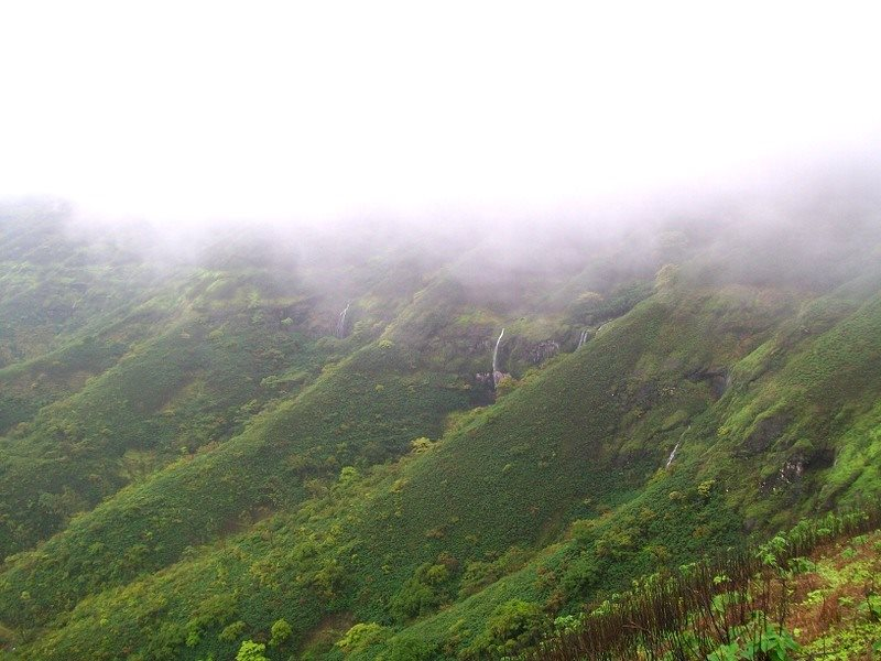 Maharashtra Camping Monsoon Trekking Adventure Pune Lonavala The Great Next