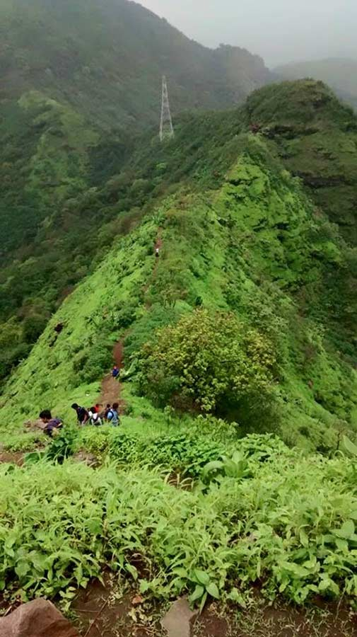 Peb Fort Trek Maharashtra Monsoon Trek Sahyadri Forests The Great Next