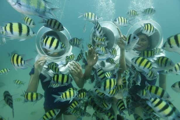 Sea Walking North Bay Port Blair Havelock Andaman Nicobar Underwater Adventure Activity Travel Marine life