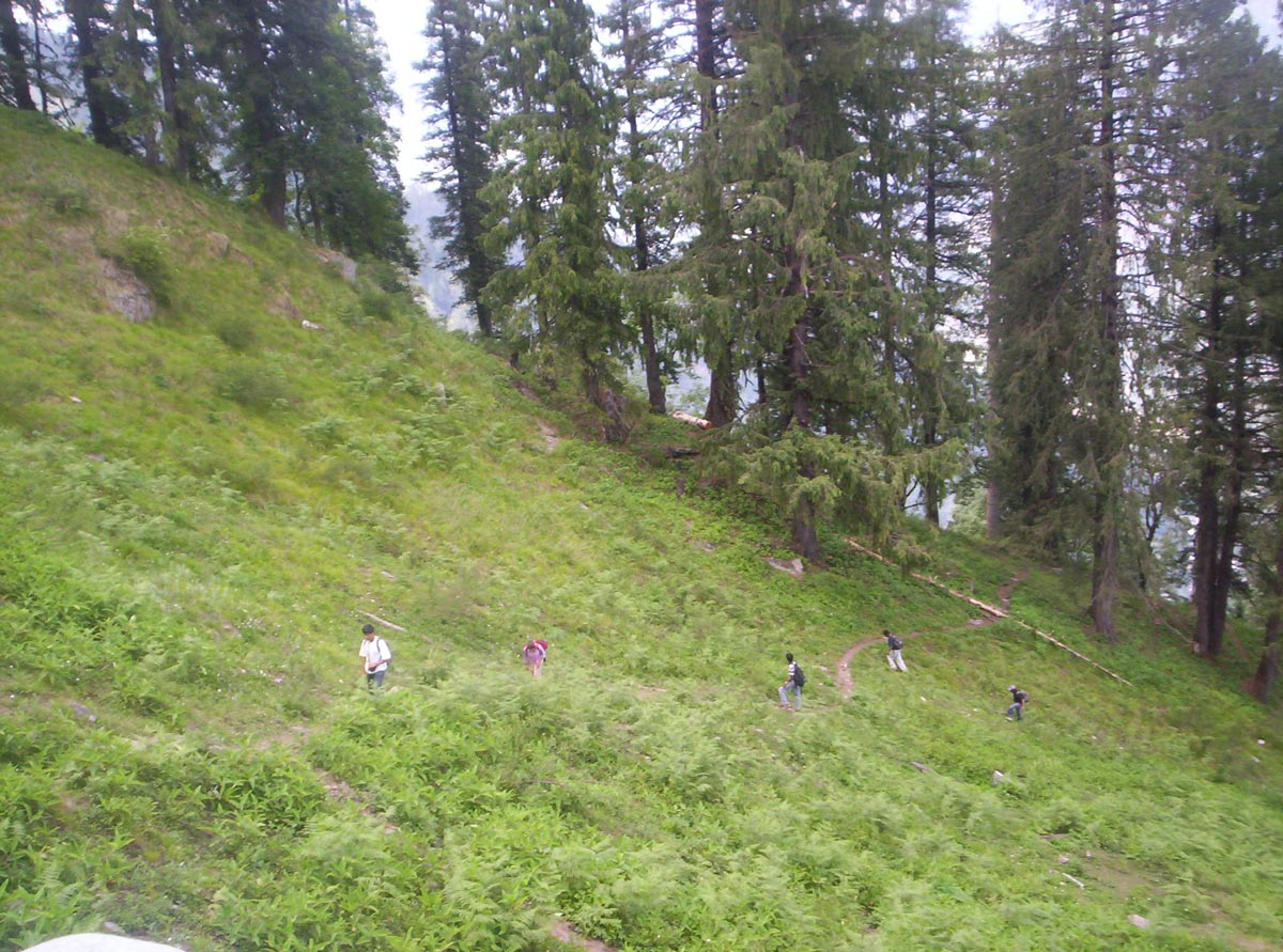 Manali Lamadugh Day Trek Adventure Mountains Forests