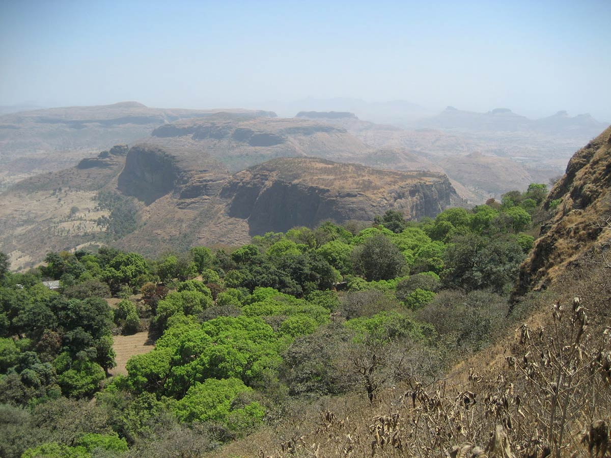 Anjaneri Trek Maharashtra Nashik Trekking Fort Hill Mountains Activies Nature Lush Monsoon