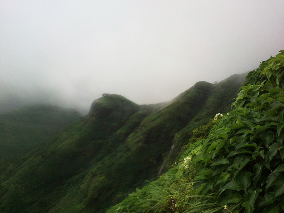 Kalsubai Peak Trek Maharashtra Monsoon Trek Sahyadri Forests The Great Next